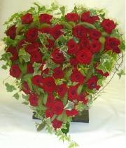 porta-nova-red-naomi-red-rose-sympathy-inspiration-3