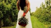 Porta-Nova-Red-Noami-Wedding-roses-inspiration- 7