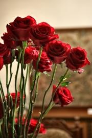 porta-nova-red-naomi-red-rose-wedding-inspiration-9