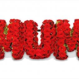 porta-nova-red-naomi-red-rose-wedding-inspiration-1-3