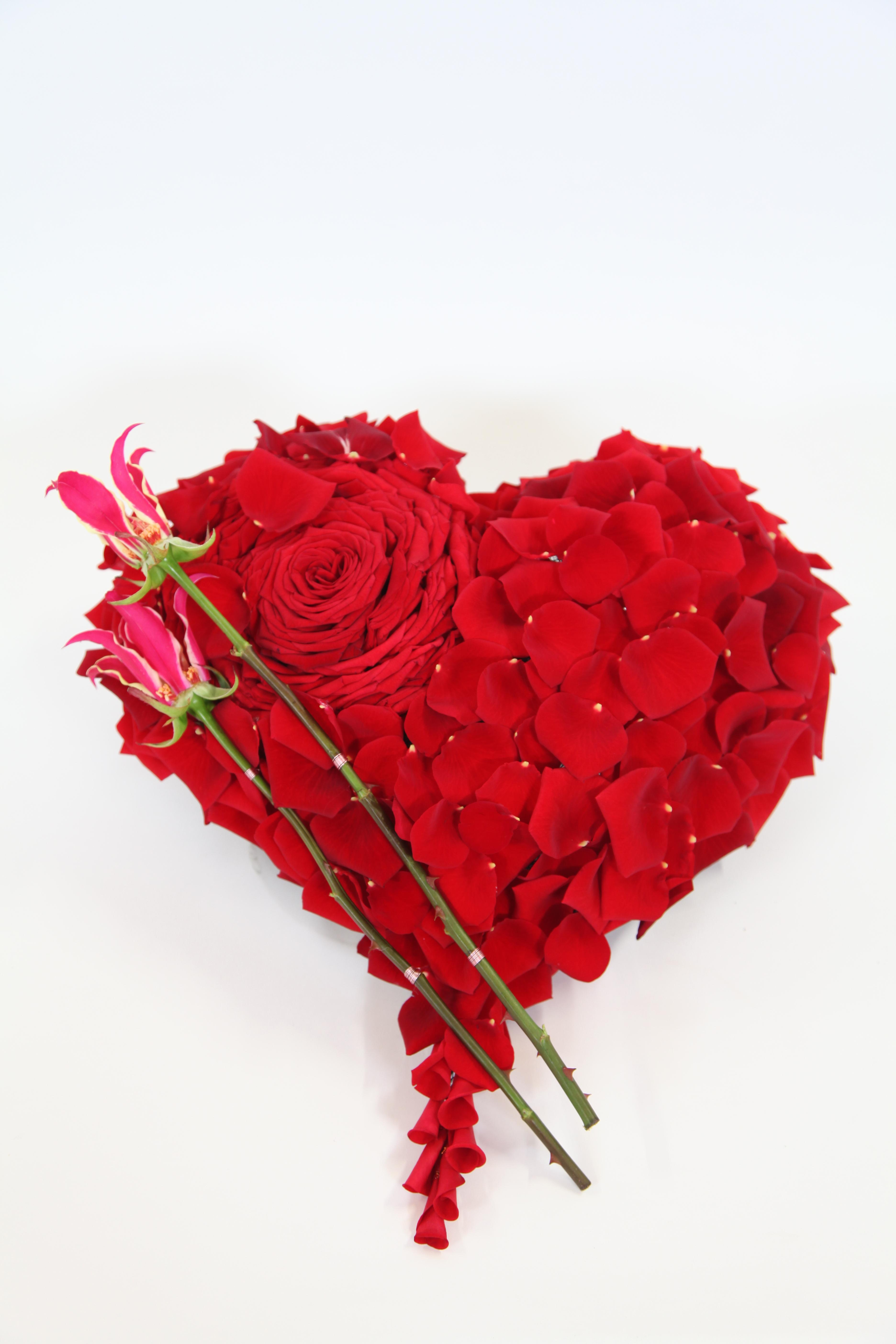 Porta Nova Red Naomi heart Dan Xavier