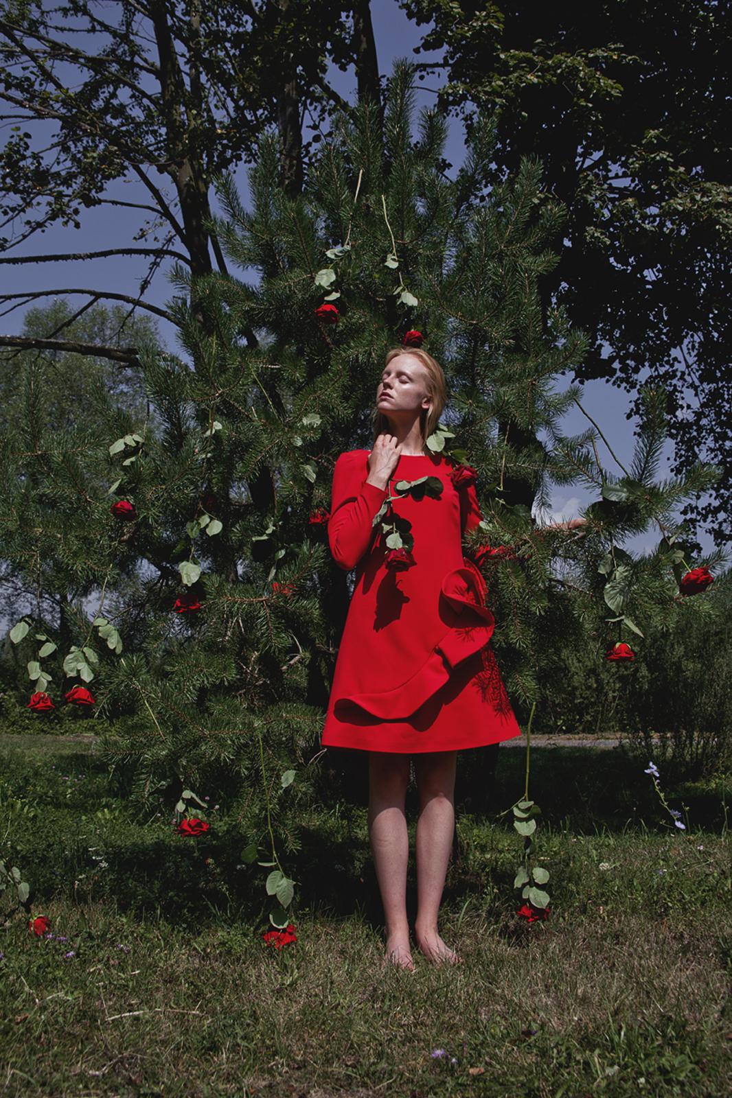 porta nova flower chef art photography