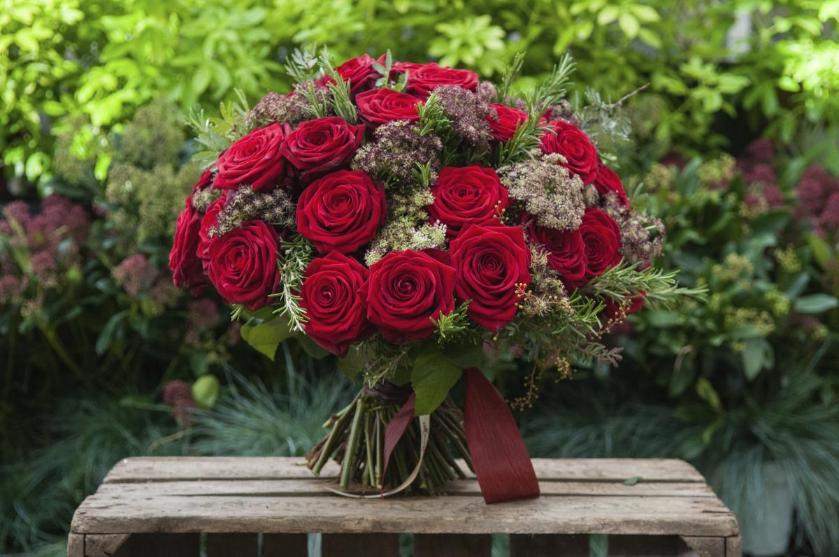 Moyses Stevens Red Naomi roses porta nova