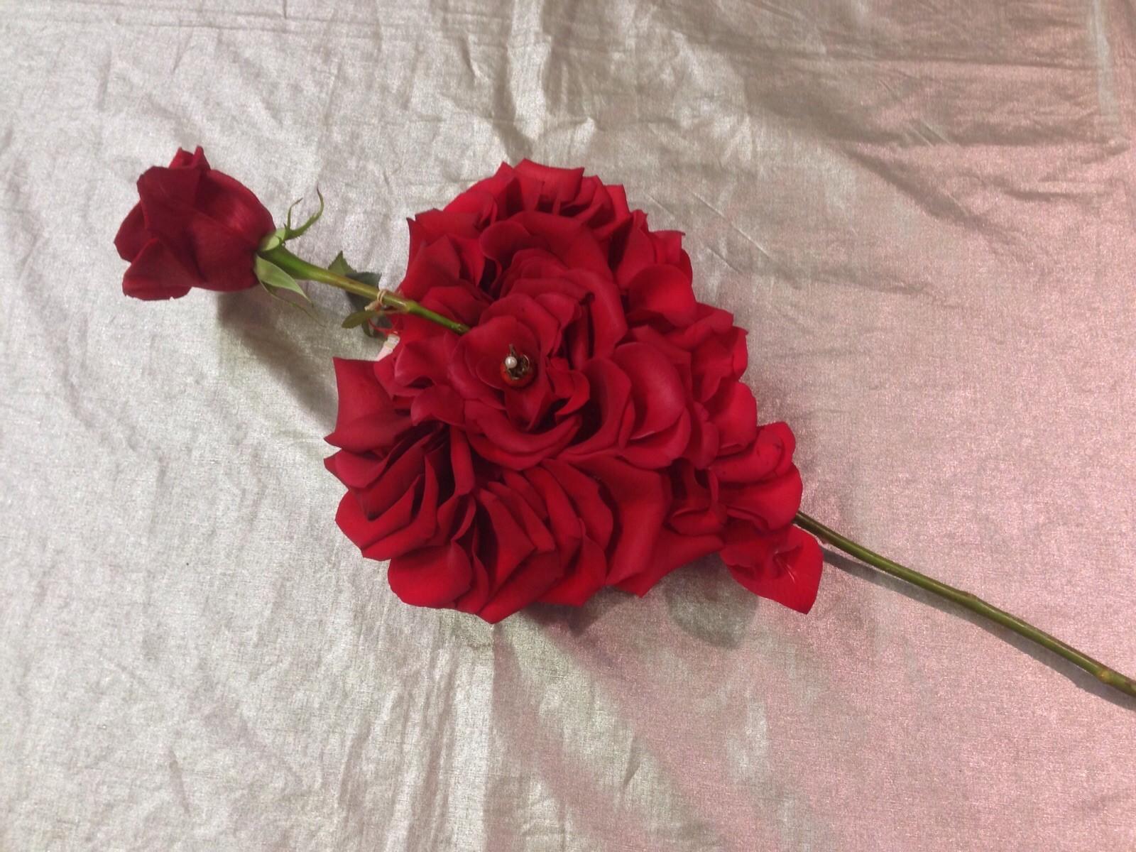 "Valentine's Day Porta Nova Red Naomi"" Cesare Bianchi"