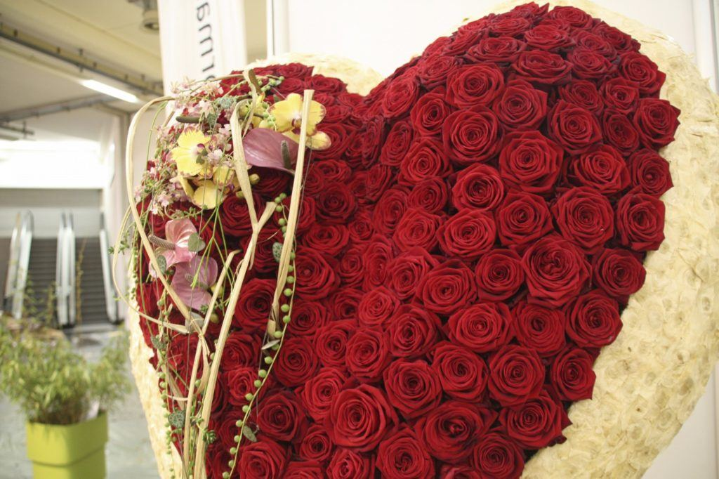 Valentine's Day Red Naomi Porta Nova