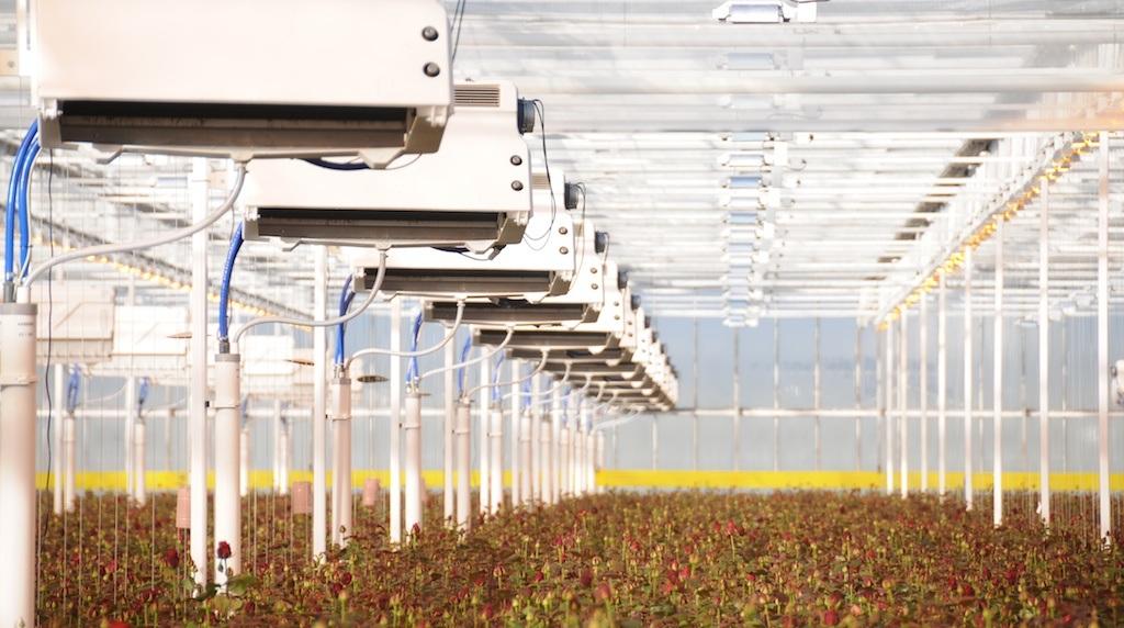 Climator Porta Nova Greenhouse
