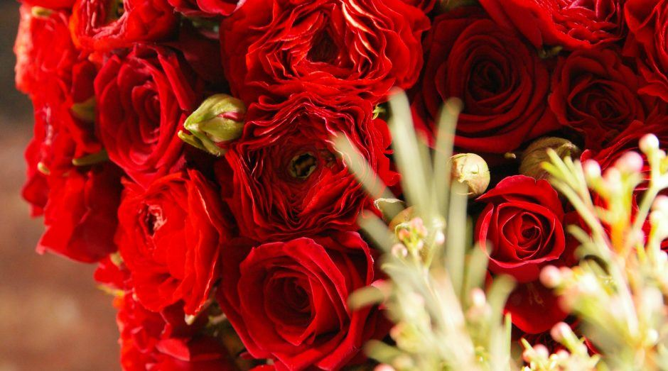 All Saints Day Porta Nova Red Naomi sympathy roses 1