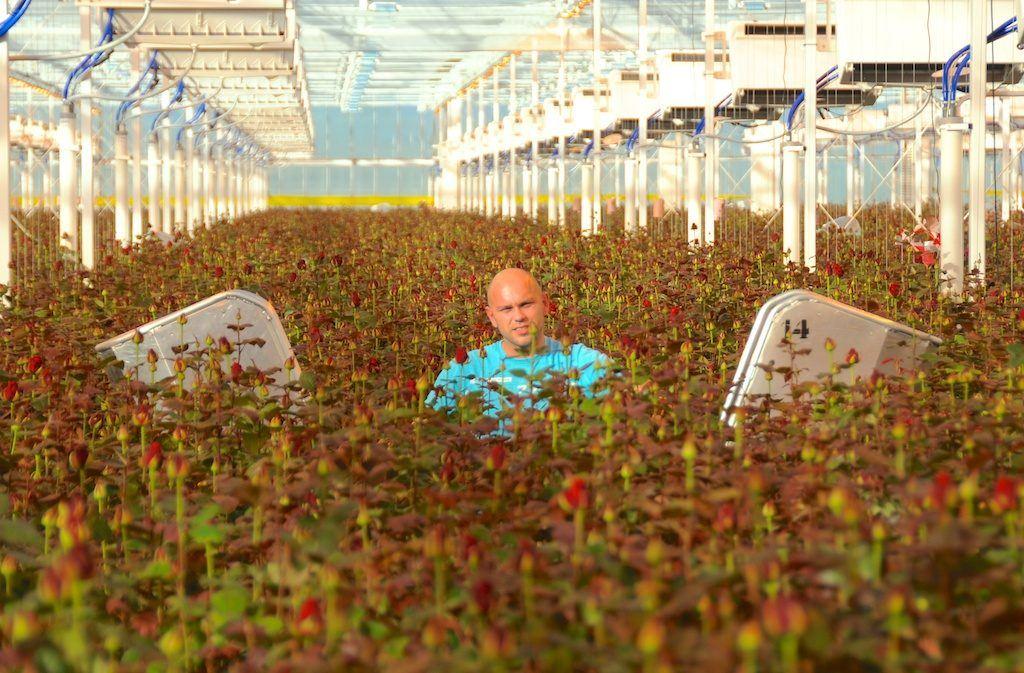 Porta nova greenhouse