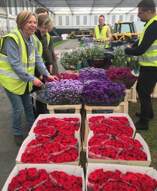 Porta Nova-rozen komen aan porta nova red naomi chelsea flower show