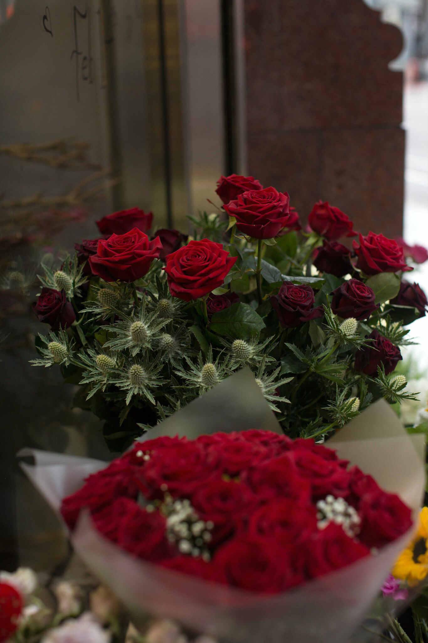 venus flowers manchester porta nova roses