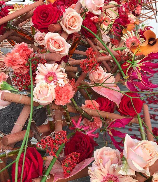 lana bates porta nova red naomi roses fleuramour 2018