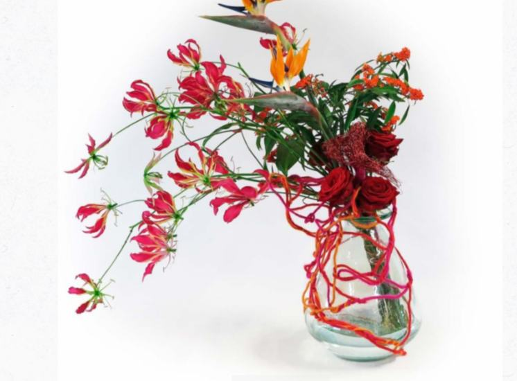 Lily Beelen Porta Nova red naomi Gloriosa, Strelizia reginae, Lehner Wolle floral fundamentals