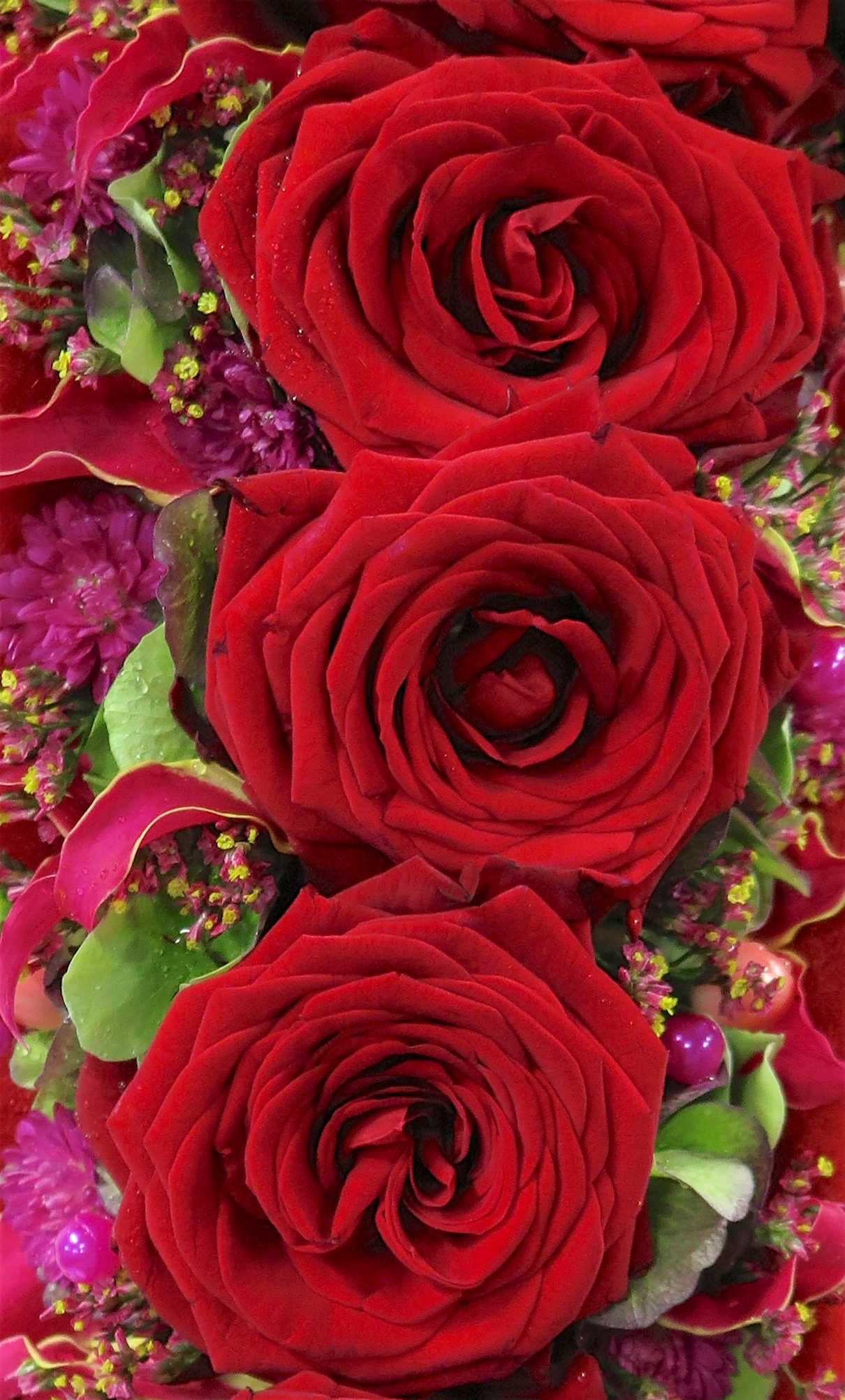 porta nova red naomi alex segura valentines day