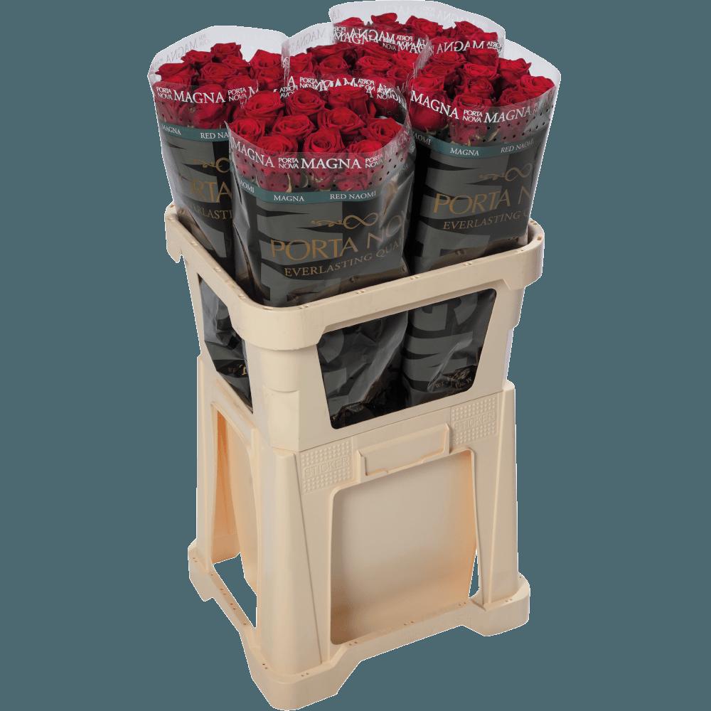 Porta Nova  Red Naomi Magna roses