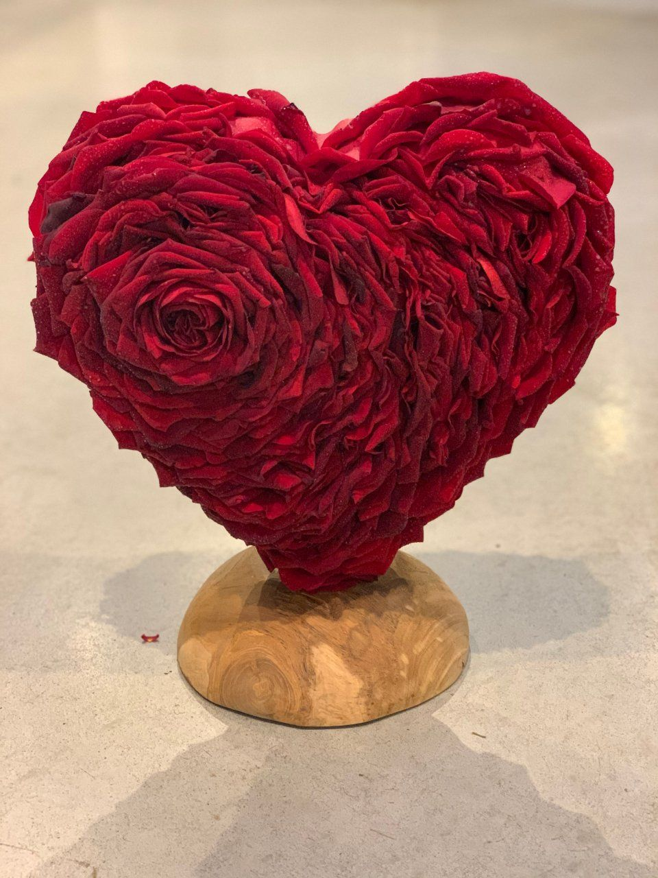 Porta Nova Red Naomi Glamelia Love Heart by Nico Canters