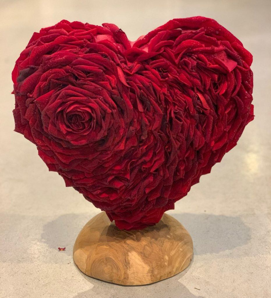 Glamelia Red Naomi rose heart by Nico Canters