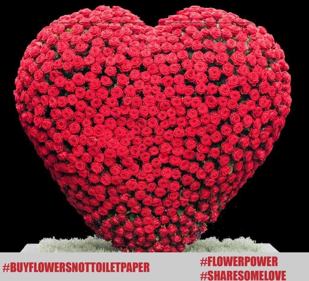 #buyflowersnottoiletpaper