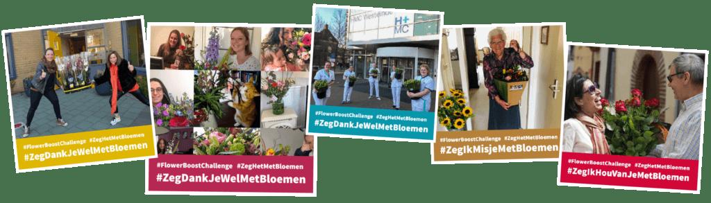 #FlowerBoostChallenge #ZegHetMetBloemen porta nova