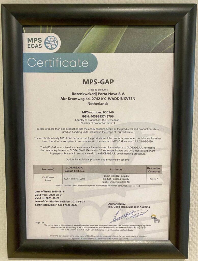 Porta Nova MPS-GAP certificate