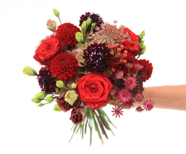 alex choi porta nova floral fundamentals issue 7