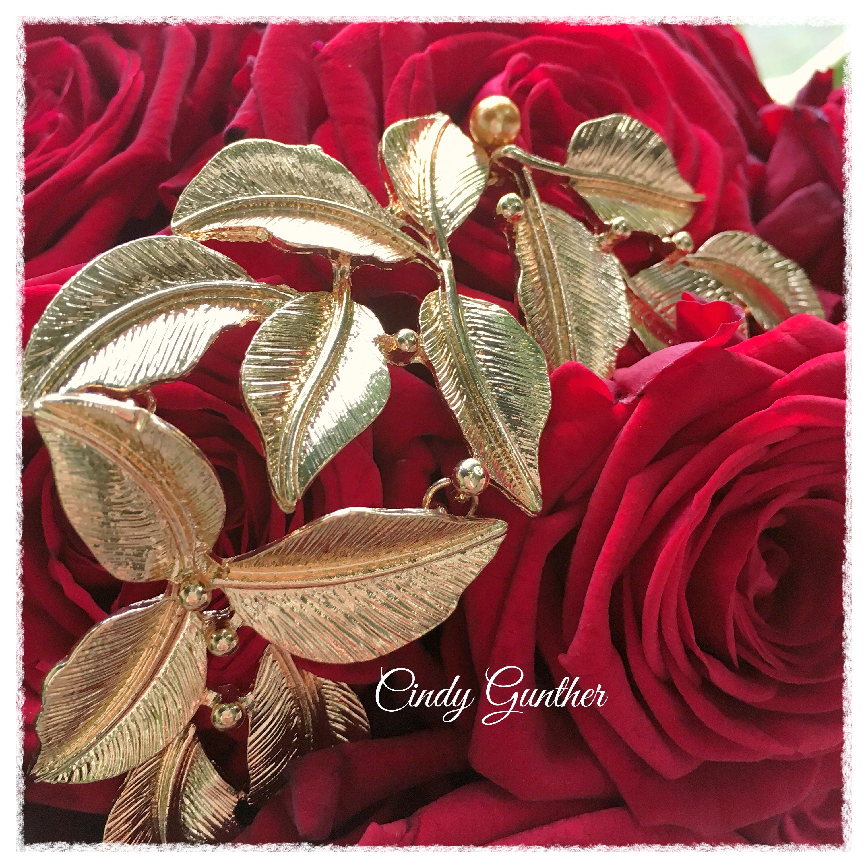 Miss Ile deFrance 2016 Porta Nova Red Naomi Cindy Gunther