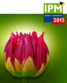 IPM_ESSEN-profile-flowerweb-1-234x300