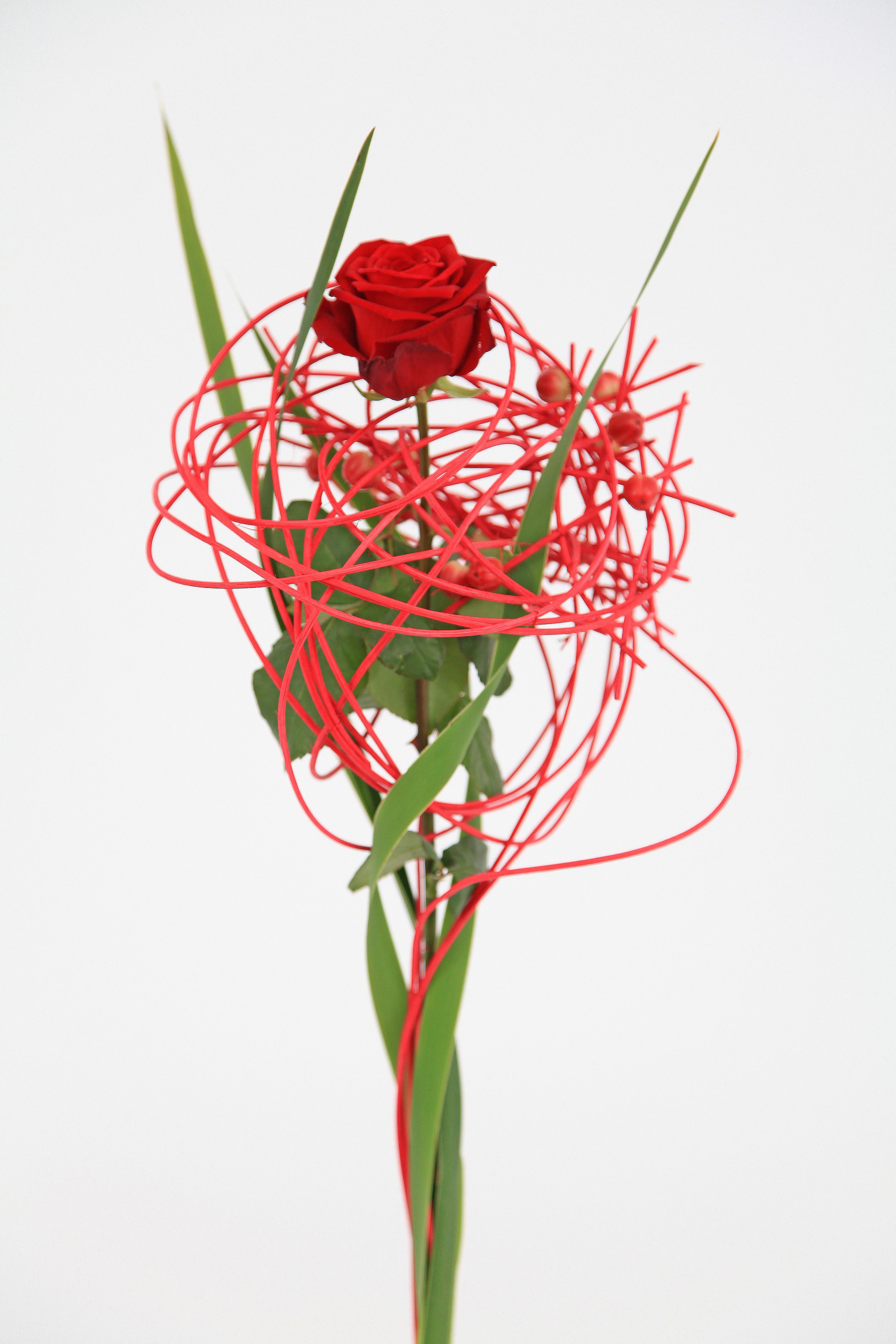 Issue 7 of Floral fundamentals magazine porta nova