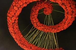 Red Naomi spiral design