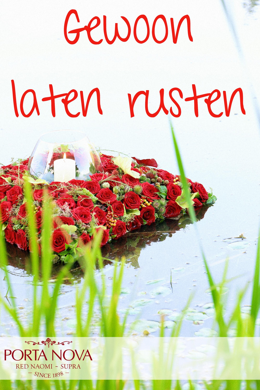 MyFlorist & Porta Nova promotional materials with Red Naomi roses dutch