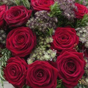 Porta Nova Red Naomi Bouquet Moyses Stevens