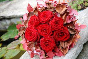 christmas-deisgns-with-porta-nova-roses-6