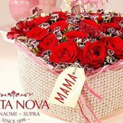 my-florist-porta-nova-mothers-day-12