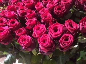 paula posy flowers porta nova 7