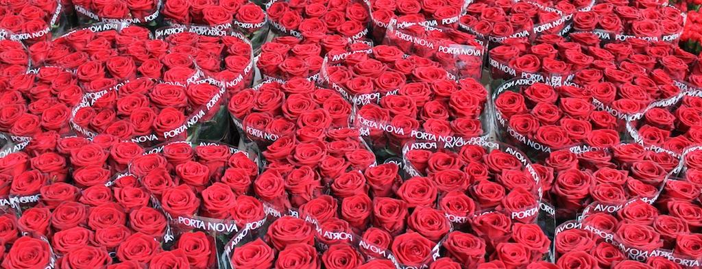 Porta Nova Red Naomi assortment
