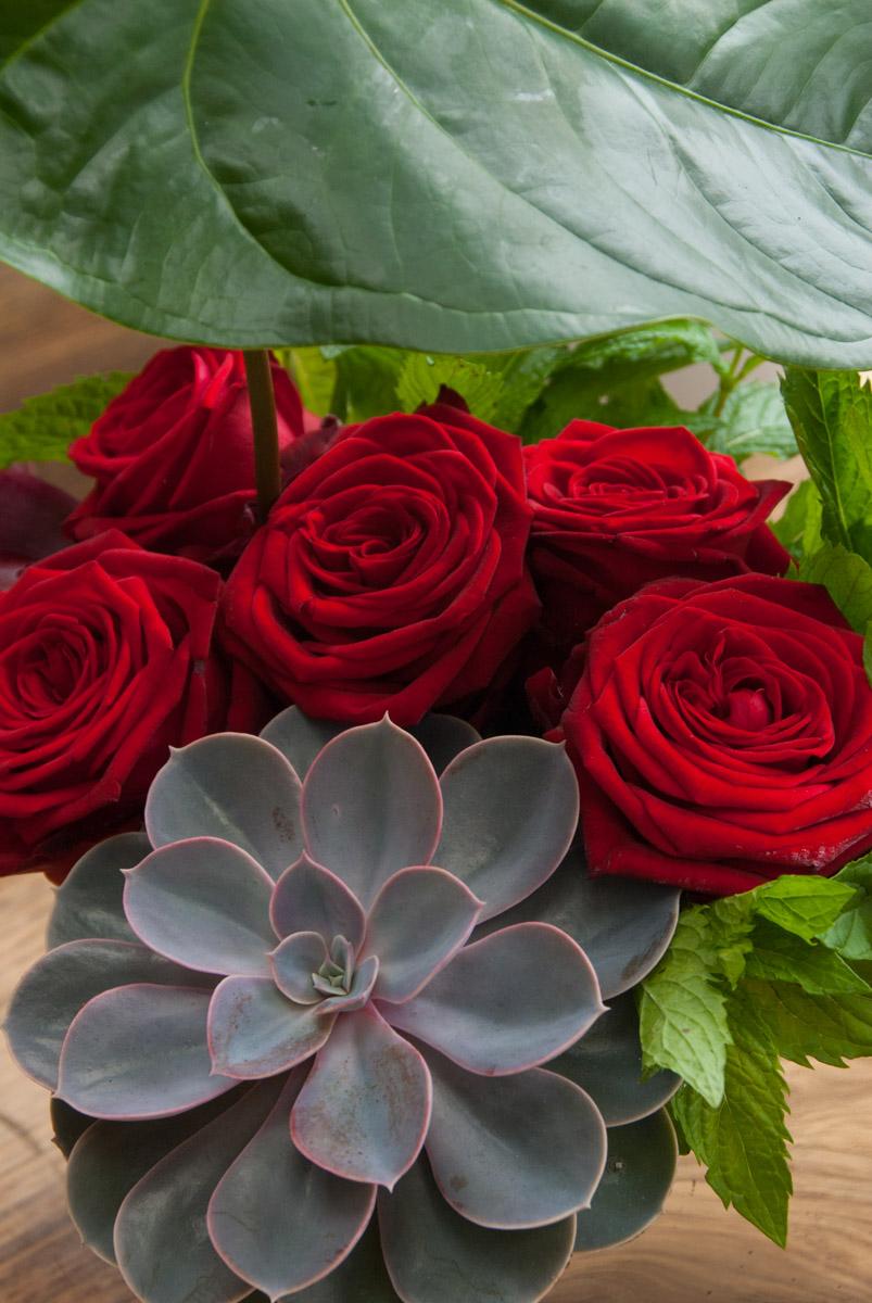 porta nova red naomi bouquet ivvo 18