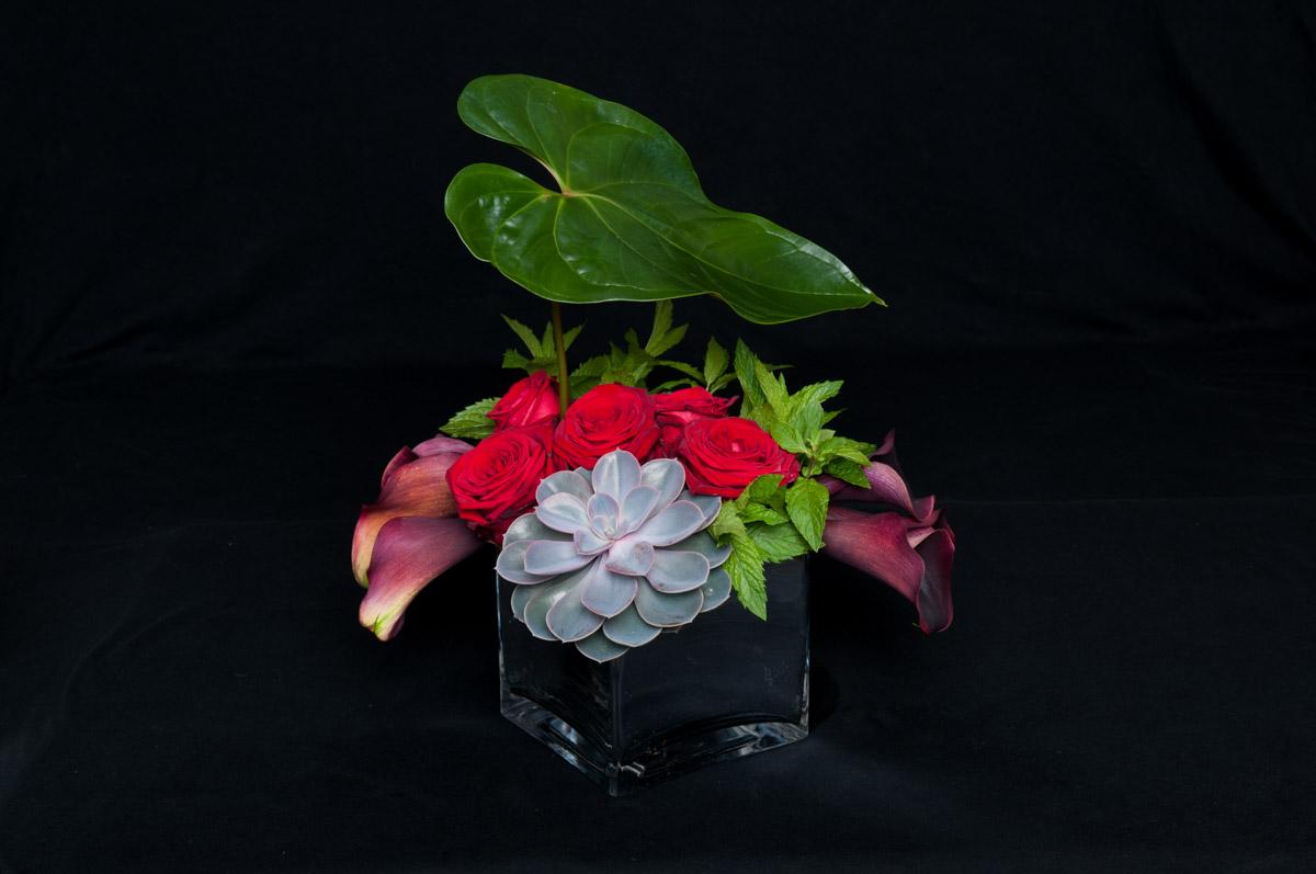 porta nova red naomi bouquet ivvo 5