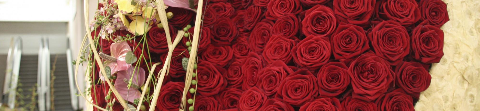 Porta Nova Valentine Red Naomi Roses