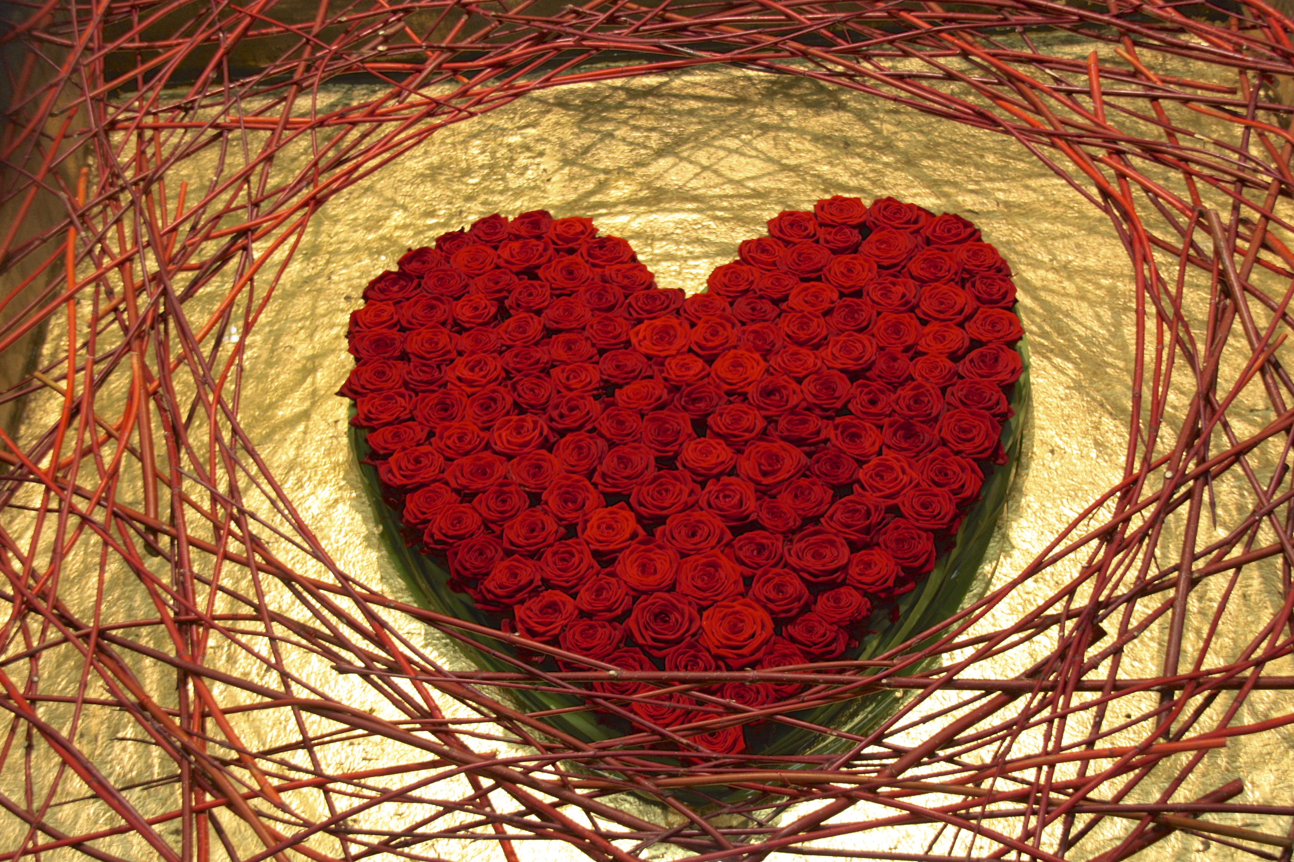 porta-nova-valentine-red-roses-_18[1]