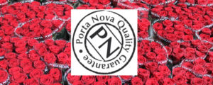 portanova-guarentee-300x120