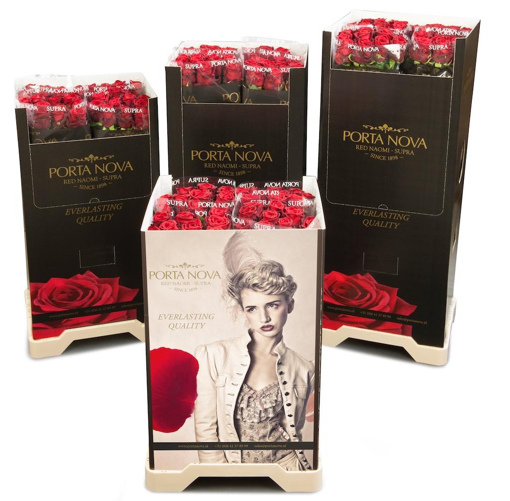 Red Naomi SUPRA roses Porta Nova