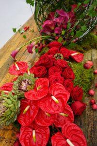 toni tibbit flowerweb porta nova fleur amour